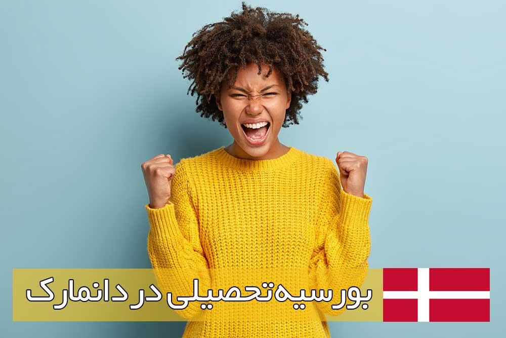 بورسیه تحصیلی در دانمارک