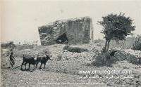عکس از قبرس قدیم (32)