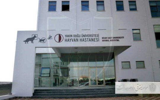 نمای ساختمان بیمارستان حیوانات